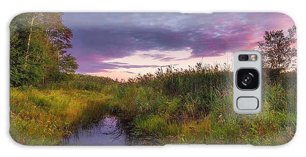 Late Summer Color At Blue Marsh Galaxy Case