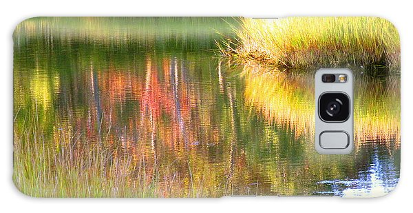 Late Summer Marsh Calm Galaxy Case