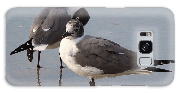 Laughing Gull Galaxy Case