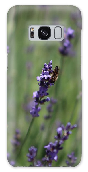 Lavender And Honey Bee Galaxy Case