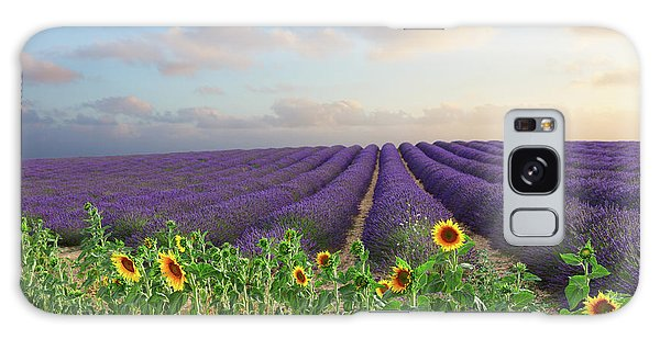Lavender And Sunflower Flowers Field Galaxy Case