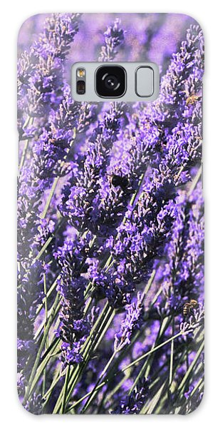 Lavender And Tiger Swallowtail In The Morning Light Galaxy Case by Diane Schuster