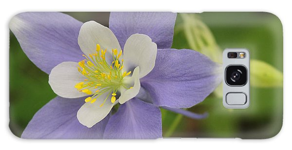 Lavender Blue Wild Columbine Galaxy Case