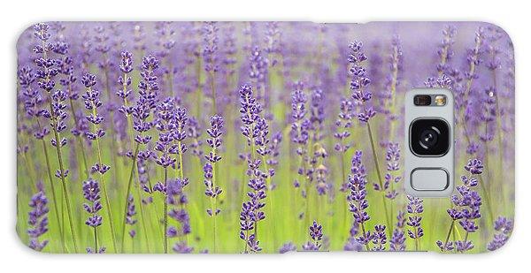Lavender Fantasy Galaxy Case