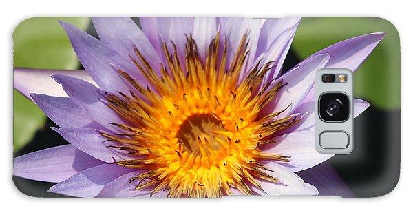 Lavender Fire Open Galaxy Case