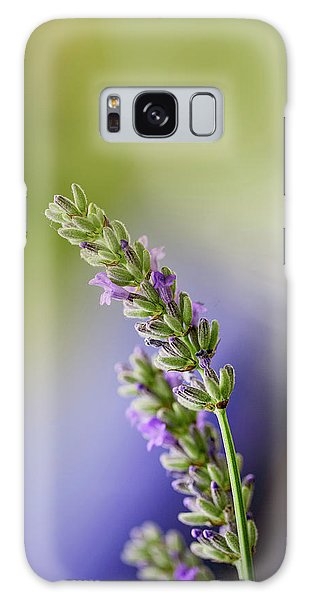 Herbs Galaxy Case - Lavender by Nailia Schwarz