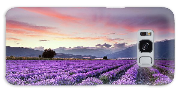 Rural Scenes Galaxy S8 Case - Lavender Season by Evgeni Dinev