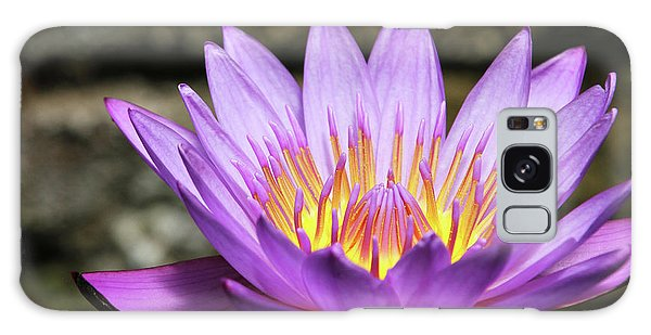 Lavender Water Lily #3 Galaxy Case