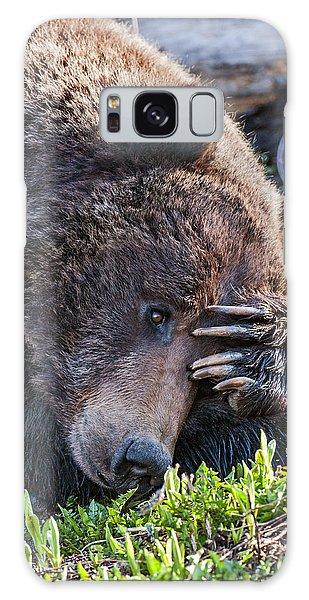 Lazy Bear Galaxy Case
