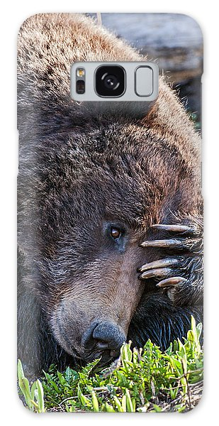 Galaxy Case featuring the photograph Lazy Bear by Wesley Aston