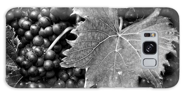 Leaf And Grapes In Black And White Galaxy Case