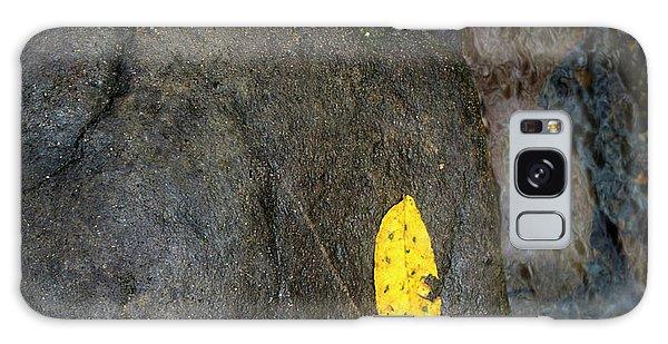 Leaf On Rock Galaxy Case