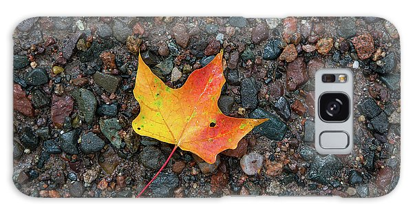 Leaf On Wet Gravel Galaxy Case