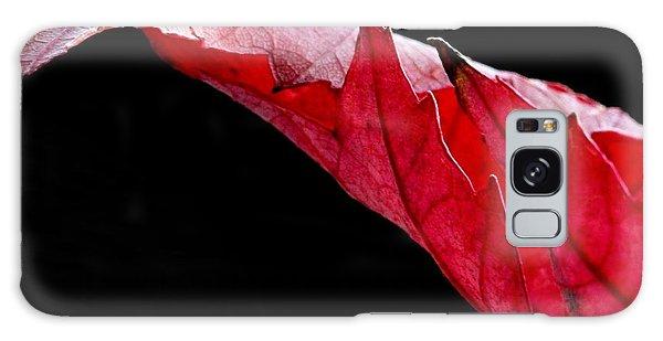 Leaf Study IIi Galaxy Case