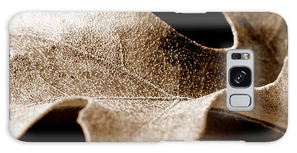 Leaf Study In Sepia Galaxy Case by Lauren Radke
