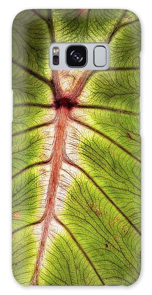 Leaf With Veins Galaxy Case
