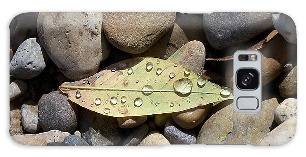 Leaf With Water Droplets In Rocks Galaxy Case