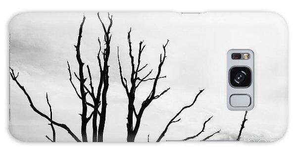 Leafless Tree Galaxy Case