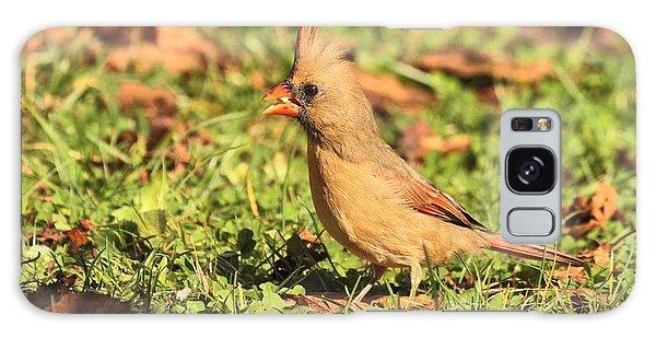 Leafy Cardinal Galaxy Case