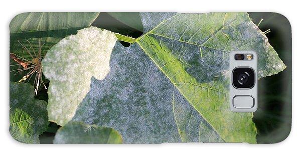 Calming Leafy Glade Galaxy Case