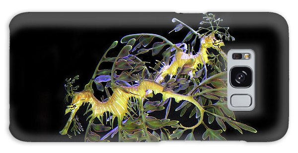 Leafy Sea Dragons Galaxy Case by Anthony Jones