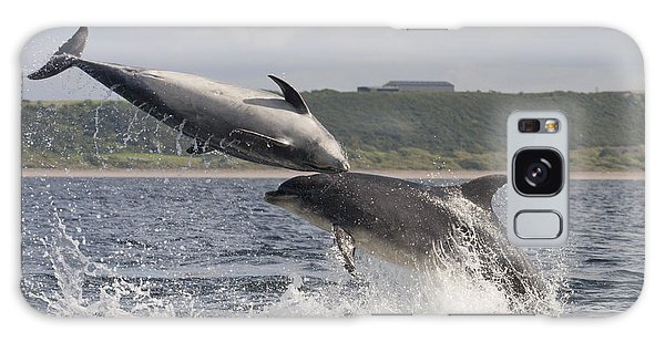 Leaping Bottlenose Dolphins - Scotland  #38 Galaxy Case
