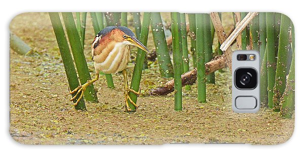 Least Bittern With Large Feet Galaxy Case