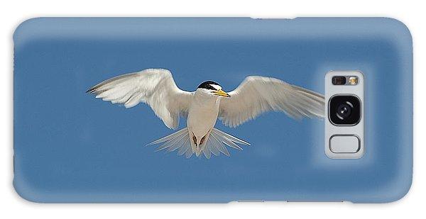 Least Tern 2 Galaxy Case by Kenneth Albin