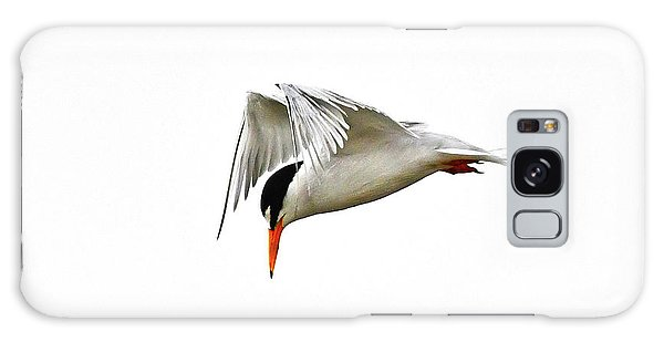 Galaxy Case featuring the photograph Least Tern  by Ken Stampfer