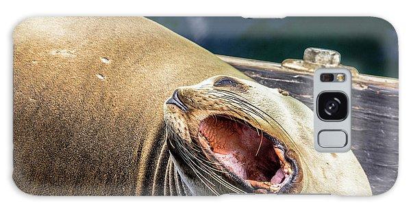 California Sea Lion Yawn Galaxy Case