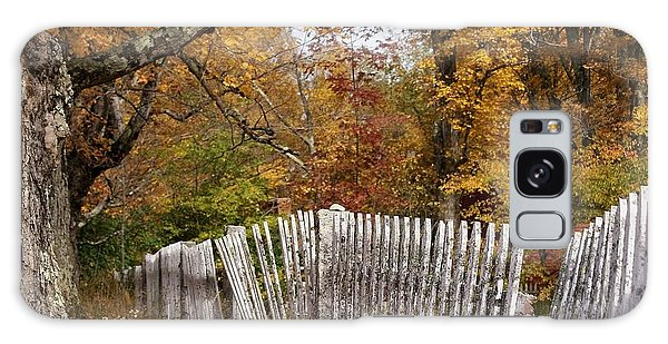 Leaves Along The Fence Galaxy Case