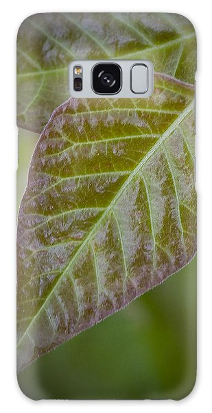 Leaves Galaxy Case