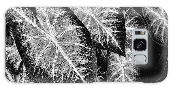 Leaves Galaxy Case