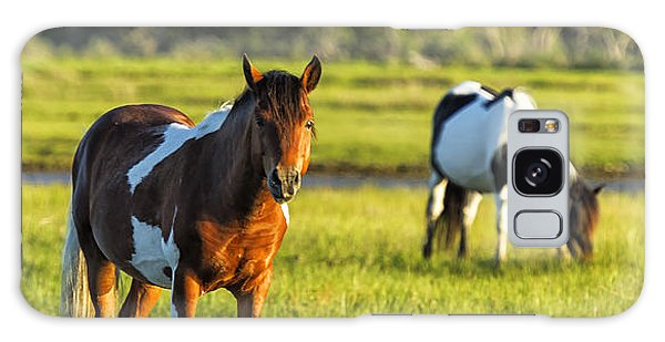 Galaxy Case featuring the photograph Leaving The Chincoteague Ponies by Belinda Greb