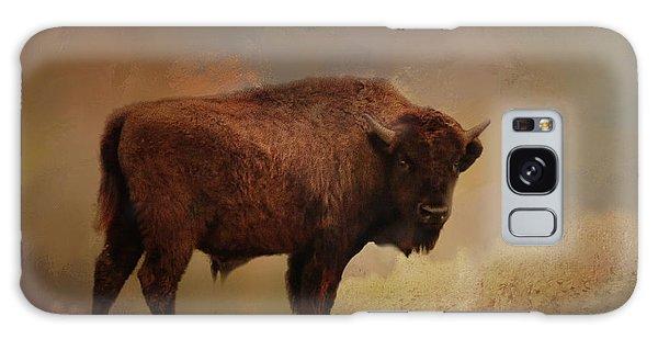 Legend Of Buffalo Spirit Galaxy Case