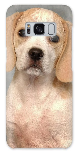 Lemon Beagle Puppy Galaxy Case