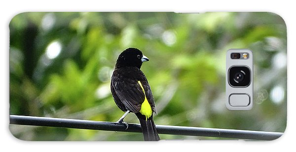 Lemon-rumped Tanager Galaxy Case