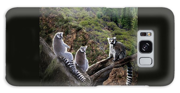 Lemur Family Galaxy Case