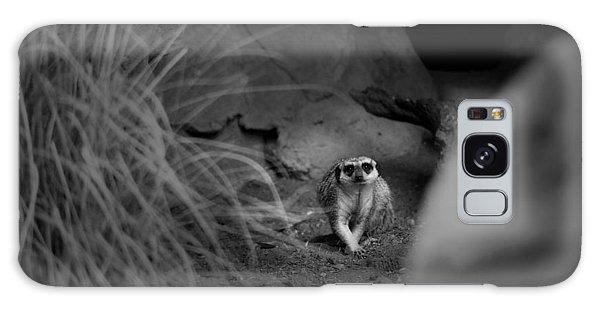 Lemur Galaxy Case