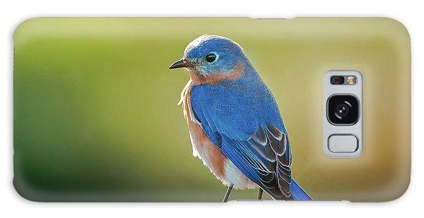 Lenore's Bluebird Galaxy Case