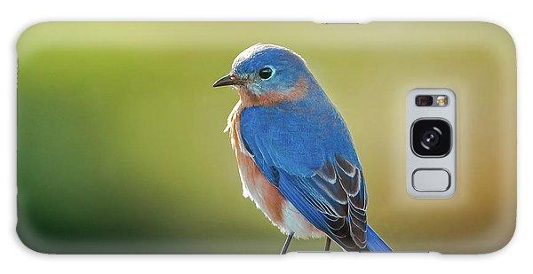 Lenore's Bluebird Galaxy Case by Robert Frederick
