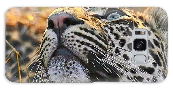 Leopard Aloft Galaxy Case
