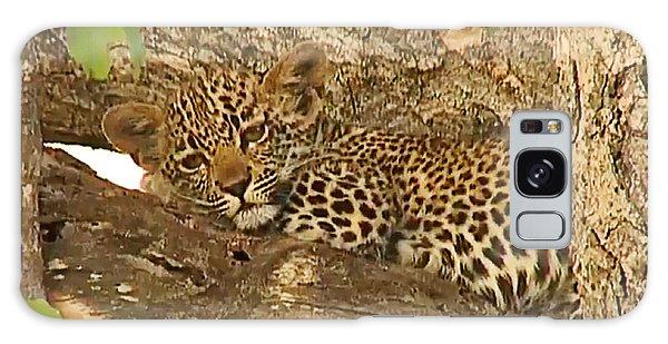 Leopard Cub Galaxy Case