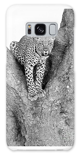 Leopard In A Tree Galaxy Case