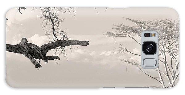 Leopard Resting On A Tree Galaxy Case