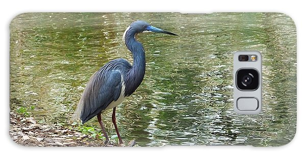 Lesser Blue Heron In Mating Plumage Galaxy Case
