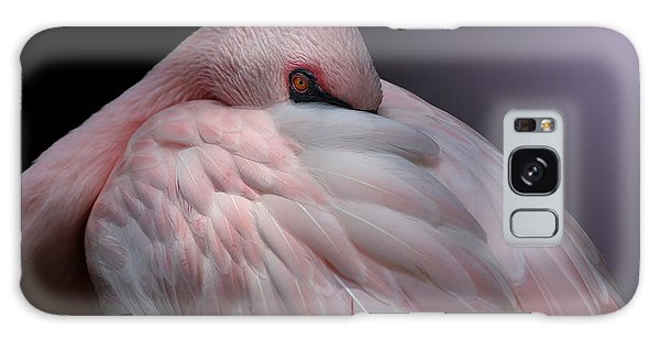 Lesser Flamingo Resting Galaxy Case
