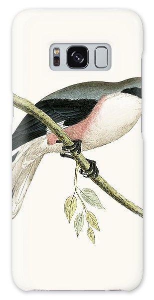 Song Bird Galaxy Case - Lesser Grey Shrike by English School