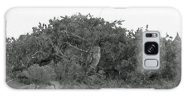 Lesser Horned Owl Galaxy Case