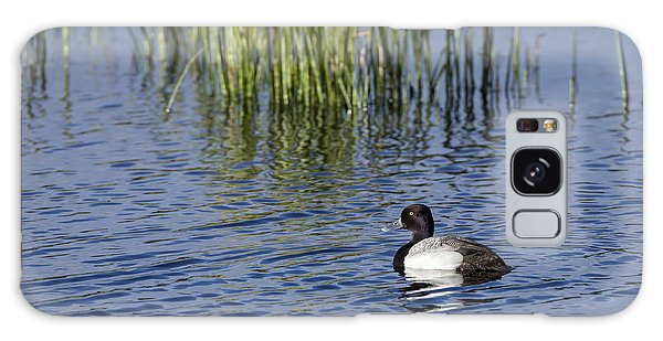 Lesser Scaup Adult Male Galaxy Case
